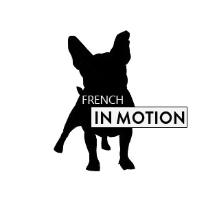 French in Motion - Konzeption Webseite